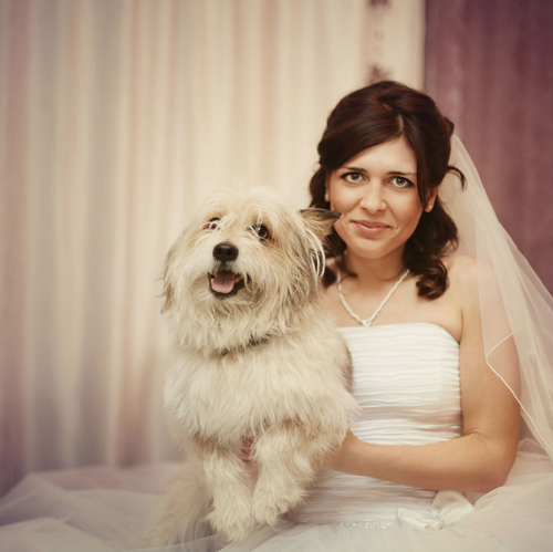 Mans Best Friend on your wedding day